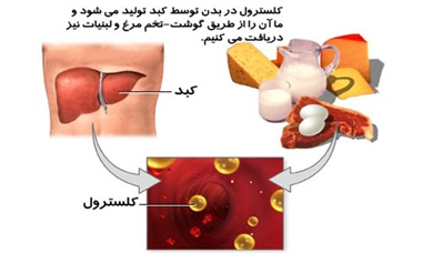 کاهش کلسترول