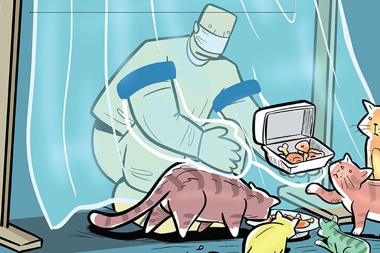 نقش حیوانهای خانگی در بیماری انسان